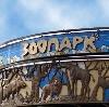 Зоопарки в Воронеже