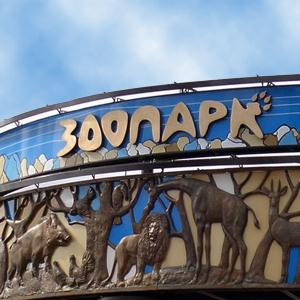 Зоопарки Воронежа
